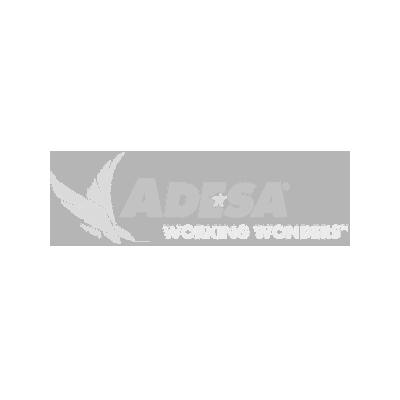 Adesa Working Wonders