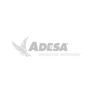 Adesa Working Wonders