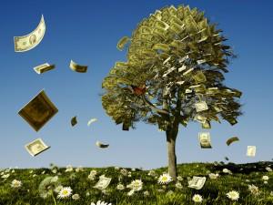 Oracle Money Tree