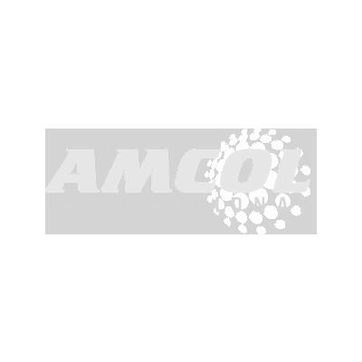 Amcol International